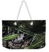 Baby Mockingbird Weekender Tote Bag