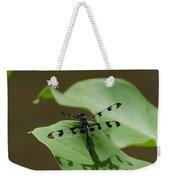 Banded Pennant Dragonfly Weekender Tote Bag