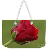 Beautiful Red Weekender Tote Bag