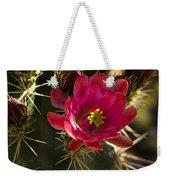 Beauty In The Desert  Weekender Tote Bag