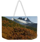 Beech Forest, Chile Weekender Tote Bag