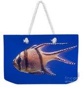Bengal Cardinal Fish Weekender Tote Bag