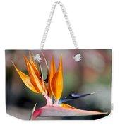 Bird Of Paradise  Weekender Tote Bag by Gunter Nezhoda