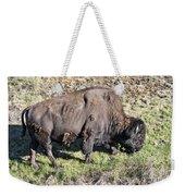 Bison Weekender Tote Bag