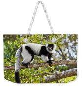 Black And White Ruffed Lemur Madagascar Weekender Tote Bag