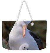 Black-browed Albatross With Chick Weekender Tote Bag