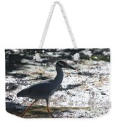 Black-crowned Night-heron Weekender Tote Bag