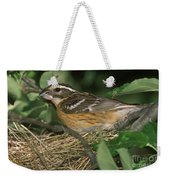 Black-headed Grosbeak Female Weekender Tote Bag