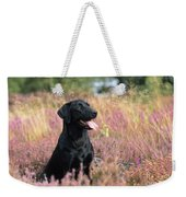 Black Labrador Dog Weekender Tote Bag