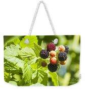 Black Raspberries 2 Weekender Tote Bag