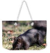Black Squirrel Weekender Tote Bag