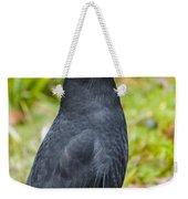 Black Tasmanian Crow Standing In Green Forest Weekender Tote Bag