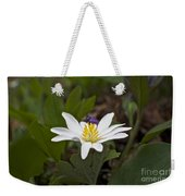 Bloodroot Wildflower - Sanguinaria Canadensis Weekender Tote Bag