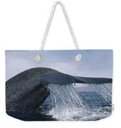 Blue Whale Tail Sea Of Cortez Mexico Weekender Tote Bag