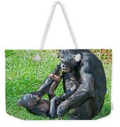 Bonobo Adult And Baby Weekender Tote Bag