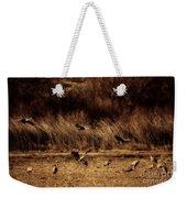 Bosque Del Apache New Mexico-sand Cranes V2 Weekender Tote Bag