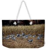 Bosque Del Apache New Mexico-sand Cranes V3 Weekender Tote Bag