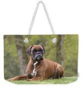 Boxer Dog Weekender Tote Bag by Jean-Michel Labat