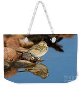 Brewers Sparrow At Waterhole Weekender Tote Bag