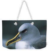 Bullers Albatross With Colorful Bill Weekender Tote Bag