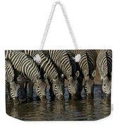 Burchells Zebra Equus Burchellii Herd Weekender Tote Bag