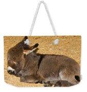 Burro Foal Weekender Tote Bag