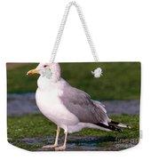 California Gull Weekender Tote Bag