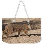Caracal  Weekender Tote Bag