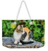 Cat On Tree Trunk Weekender Tote Bag