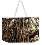 Cathedral Fig Tree Weekender Tote Bag