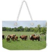 Cattle Grazing Weekender Tote Bag