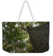 Ceiba Tree Weekender Tote Bag