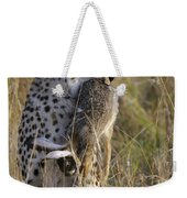 Cheetah Carrying Its Prey Weekender Tote Bag