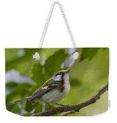 Chesnutsided Warbler Weekender Tote Bag