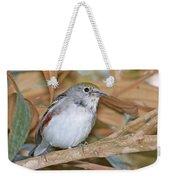 Chestnut-sided Warbler Weekender Tote Bag