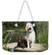 Chocolate And Cream Labradoodles Weekender Tote Bag