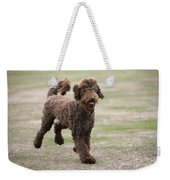 Chocolate Labradoodle Running In Field Weekender Tote Bag