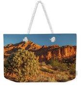 Cholla Cactus And Red Rocks At Sunrise Weekender Tote Bag