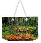 Cinnamon Ferns And Red Spruce Trees Weekender Tote Bag
