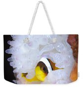 Clarks Anemonefish In White Anemone Weekender Tote Bag