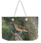 Clay-colored Thrush Weekender Tote Bag