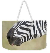 Close-up Of A Burchells Zebra Equus Weekender Tote Bag