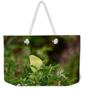Clouded Sulphur Butterfly Weekender Tote Bag
