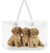 Cockapoo Puppy Dogs Weekender Tote Bag