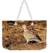 Collared Dove Weekender Tote Bag