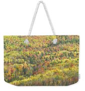 Colorful Autumn Forest In Mount Blue State Park Weld Maine Weekender Tote Bag