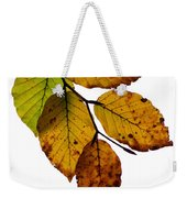 Colorful Leaves Isolated On A White Background Weekender Tote Bag