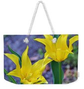 Colors Of Spring Weekender Tote Bag