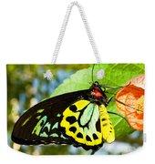 Common Birdwing Butterfly Weekender Tote Bag