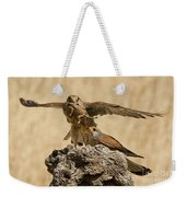 Common Kestrel Falco Tinnunculus Weekender Tote Bag